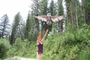 Beth letting an owl fly away from hands