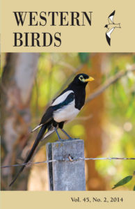 Western Birds cover showing Yellow-billed Magpie