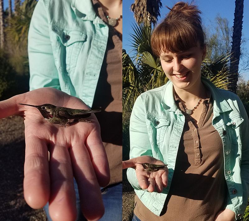 Adrienne holding a hummingbird