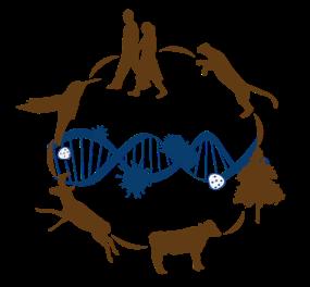 Disease Ecology Course logo
